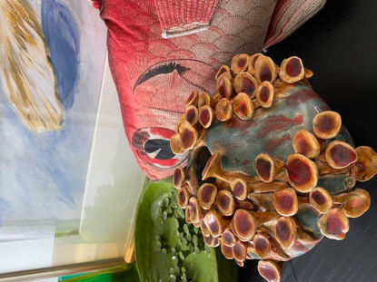 Afbeeldingen van Paddenstoelen vaas