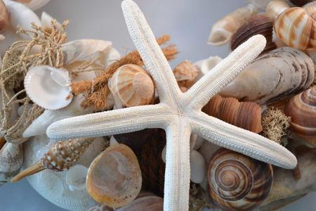 Afbeelding voor categorie Kransen en schelpen