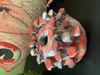 Afbeeldingen van Paddenstoelen vaasje Roze