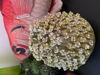 Afbeeldingen van Vaas met bloemen van keramiek